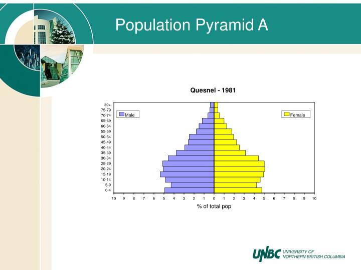 Population Pyramid A