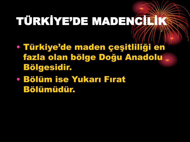 TÜRKİYE'DE MADENCİLİK