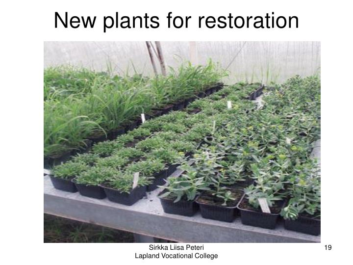 New plants for restoration