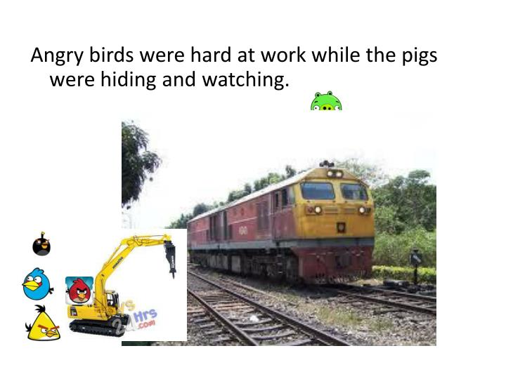 Angry birds were hard at work while the pigs were hiding and watching.