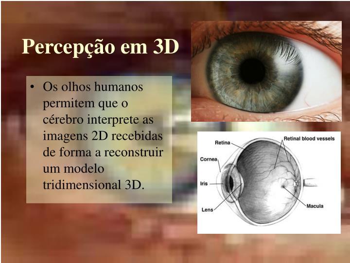 Percepção em 3D