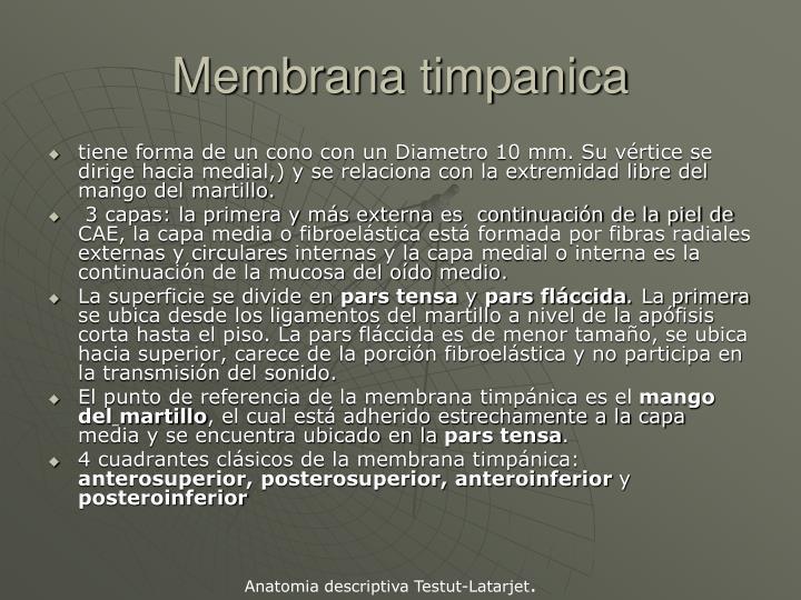 Membrana timpanica