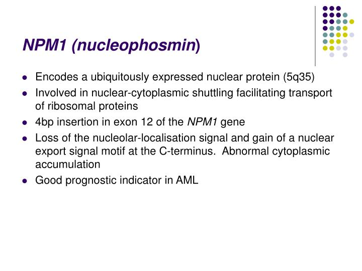 NPM1 (nucleophosmin