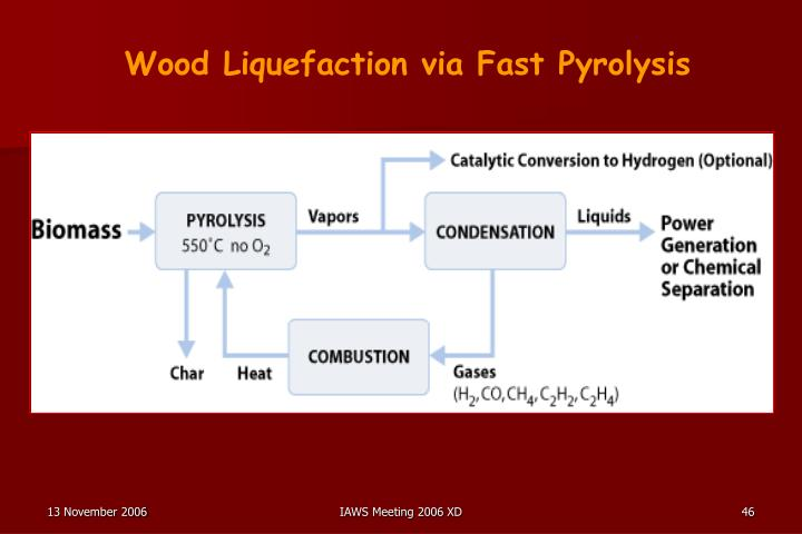 Wood Liquefaction via Fast Pyrolysis