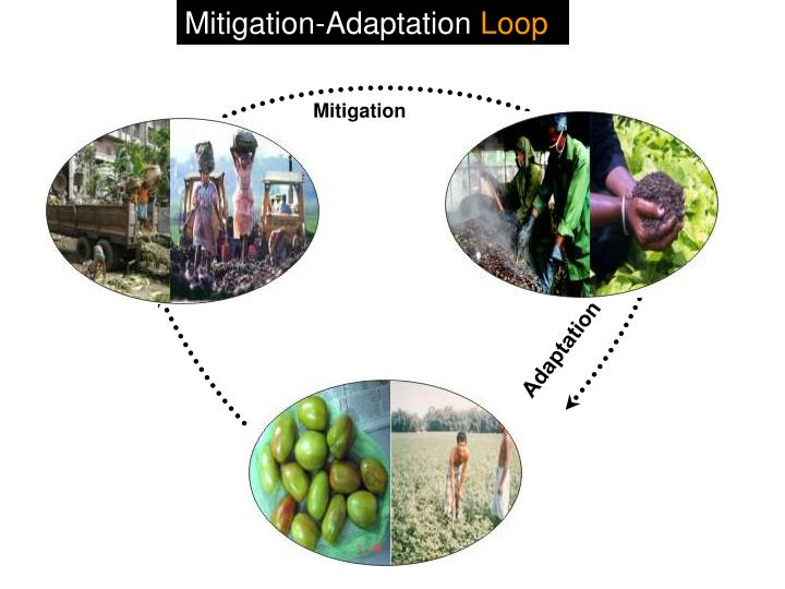 Mitigation-Adaptation