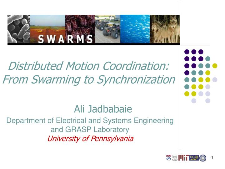 Distributed motion coordination from swarming to synchronization