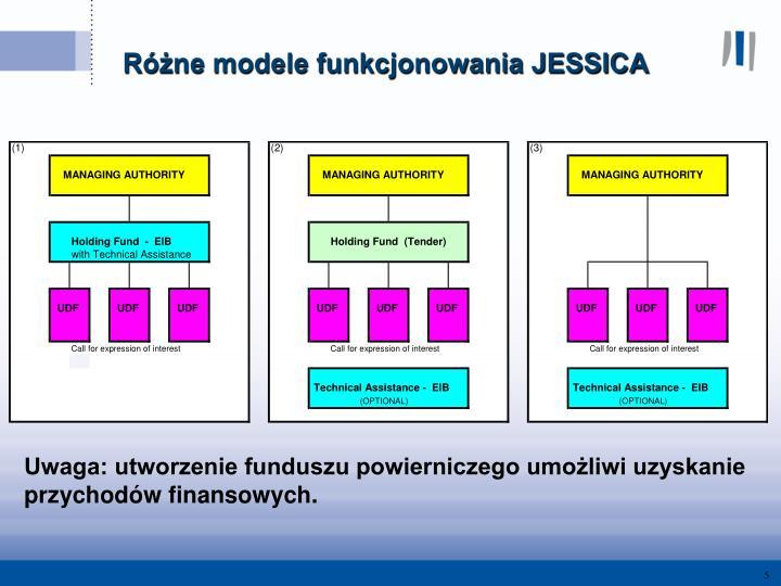 Różne modele funkcjonowania JESSICA