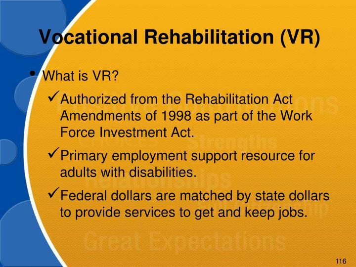 Vocational Rehabilitation (VR)