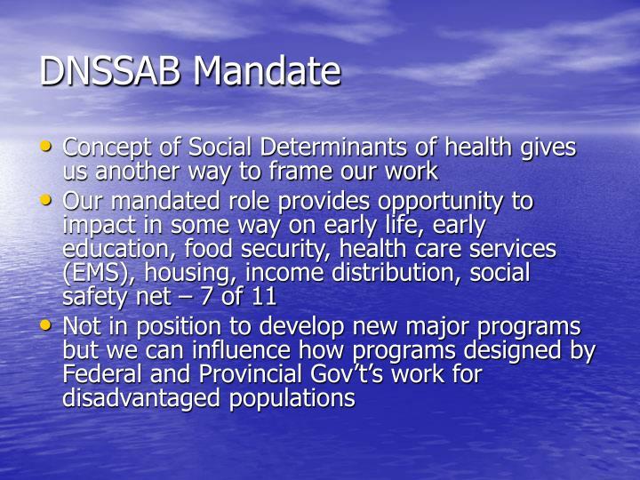 DNSSAB Mandate