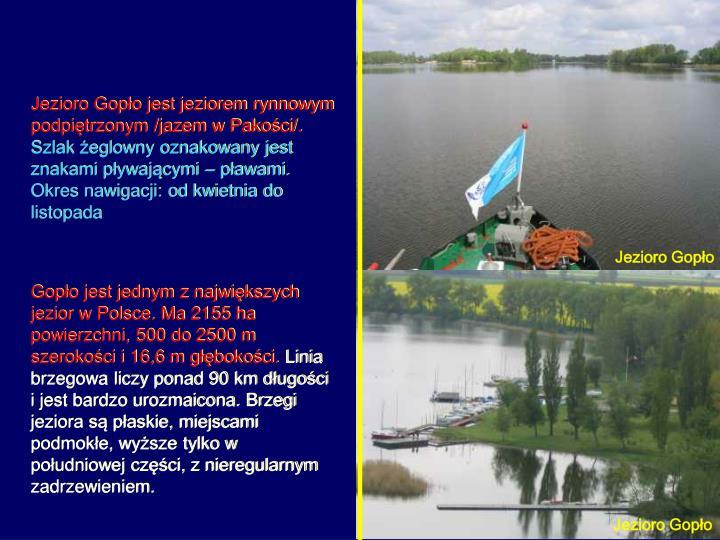 Jezioro Gopło jest jeziorem rynnowym podpiętrzonym /jazem w Pakości/.