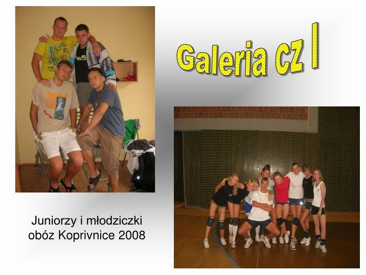 Galeria cz I