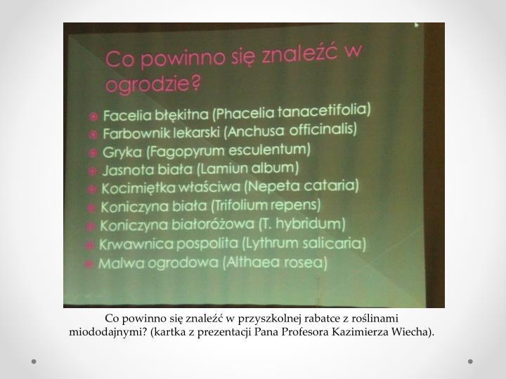 Co powinno się znaleźć w przyszkolnej rabatce z roślinami miododajnymi? (kartka z prezentacji Pana Profesora Kazimierza Wiecha).