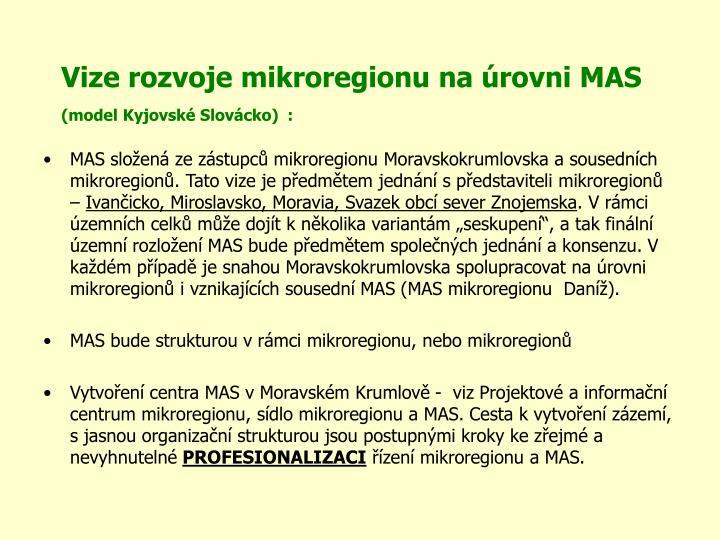 Vize rozvoje mikroregionu na úrovni MAS