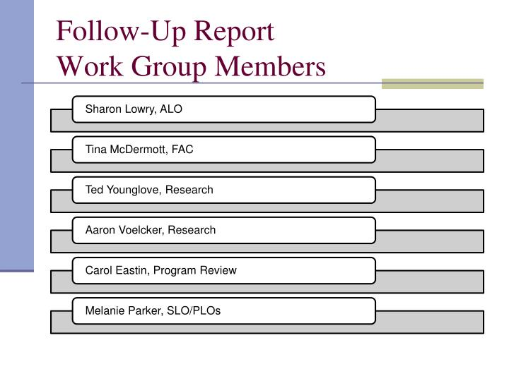 Follow up report work group members