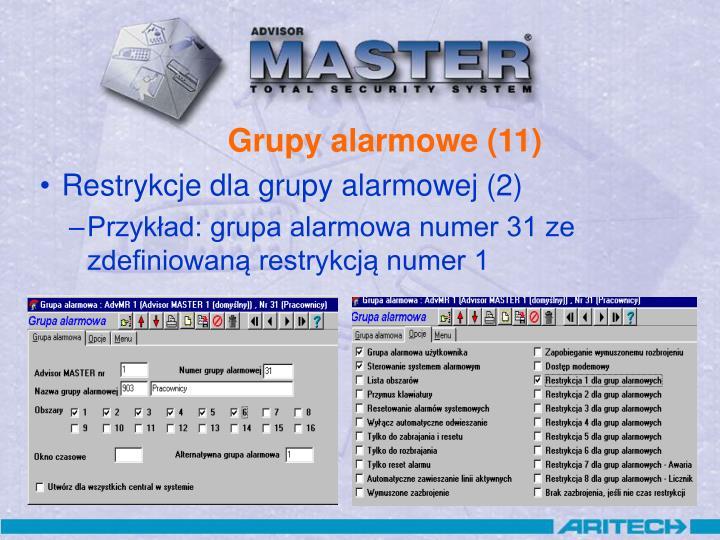Grupy alarmowe (11)