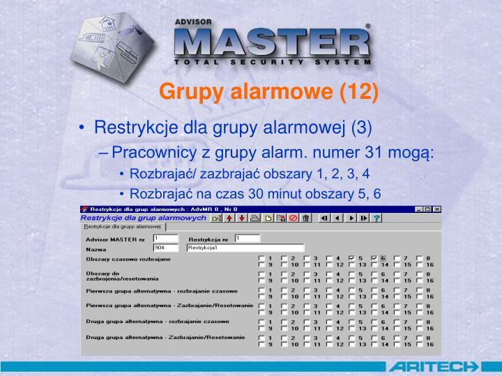Grupy alarmowe (12)