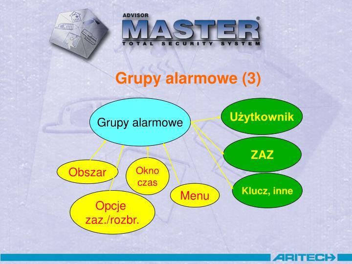 Grupy alarmowe (3)