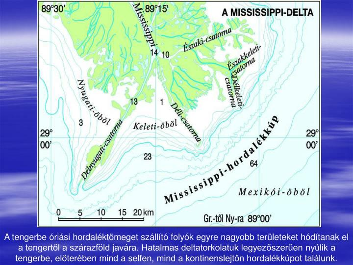 A tengerbe óriási hordaléktömeget szállító folyók egyre nagyobb területeket hódítanak el a tengertől a szárazföld javára. Hatalmas deltatorkolatuk legyezőszerűen nyúlik a tengerbe, előterében mind a selfen, mind a kontinenslejtőn hordalékkúpot találunk.
