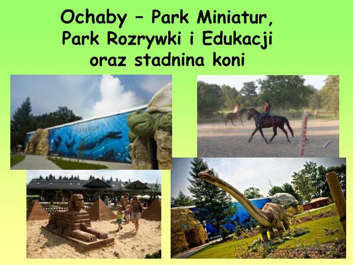 Ochaby –