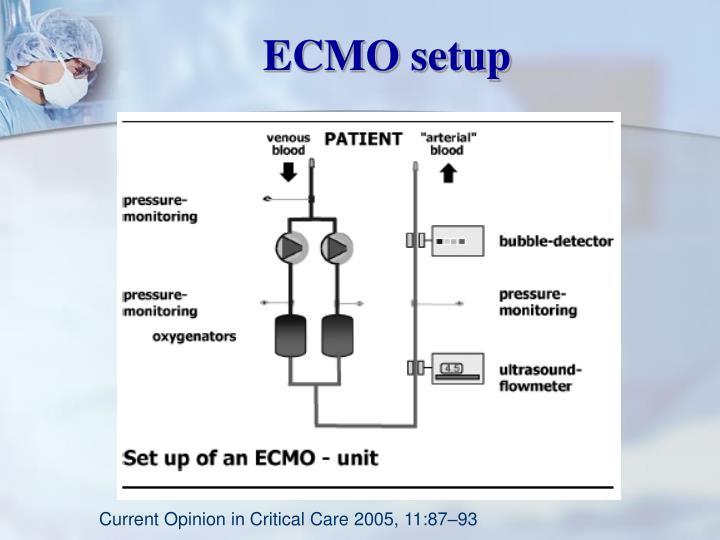 ECMO setup
