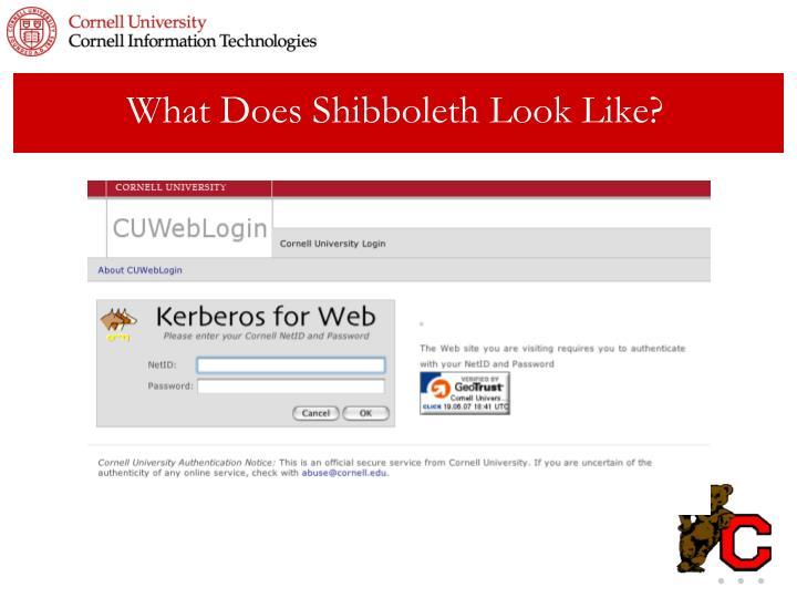 What Does Shibboleth Look Like?