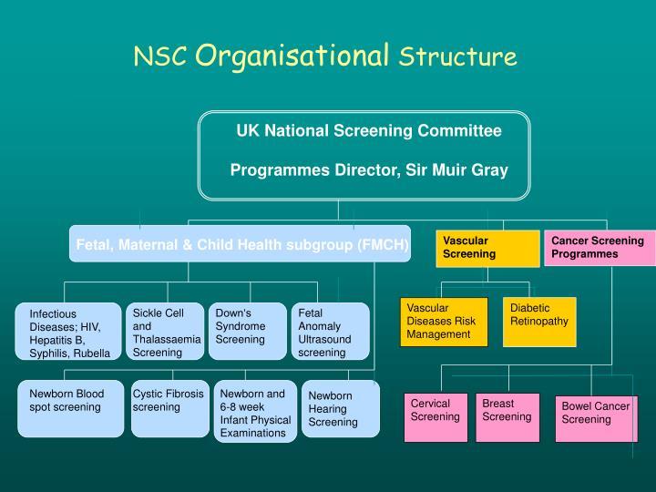 UK National Screening Committee