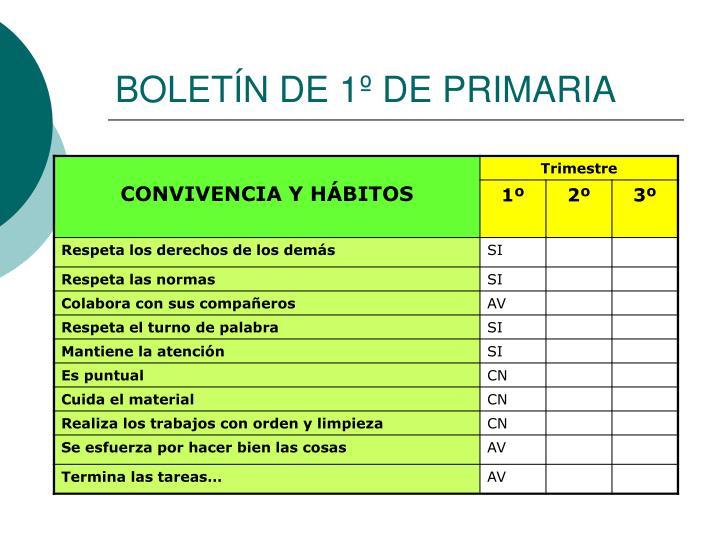 BOLETÍN DE 1º DE PRIMARIA