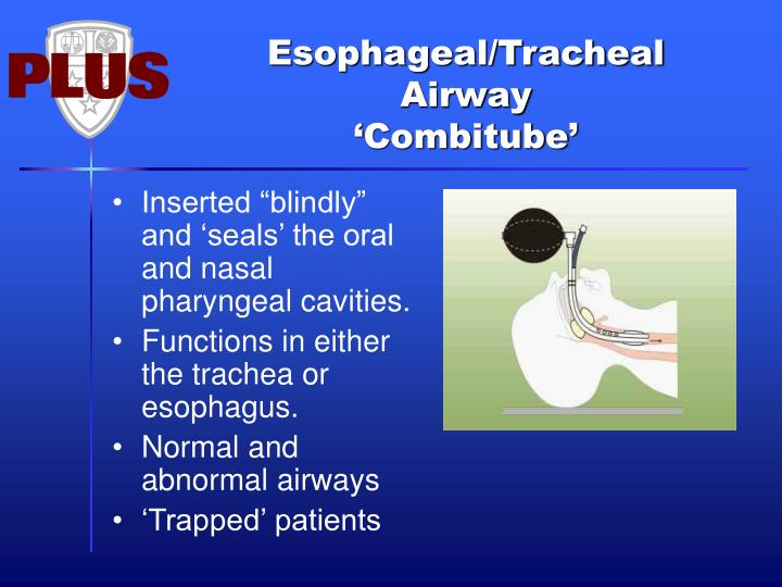 "Inserted ""blindly"" and 'seals' the oral and nasal pharyngeal cavities."