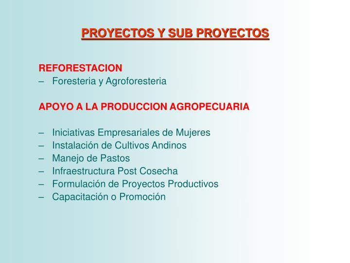 PROYECTOS Y SUB PROYECTOS
