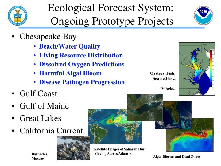 Ecological Forecast System: