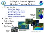 ecological forecast system ongoing prototype projects