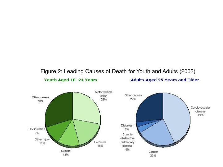 Figure 2: Leading Causes of Death for Youth and Adults (2003)
