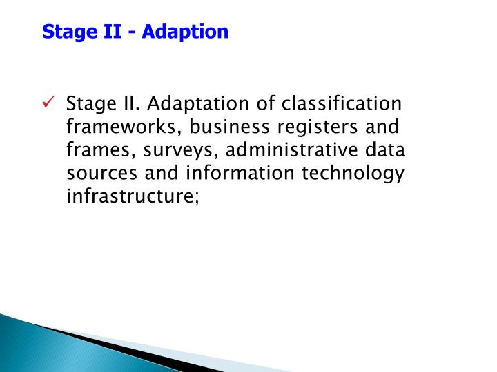 Stage II - Adaption
