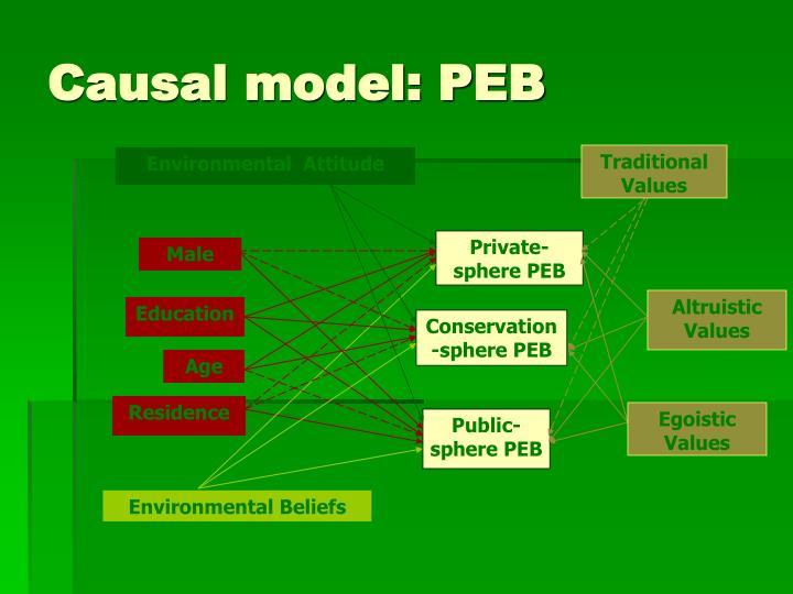 Causal model: PEB