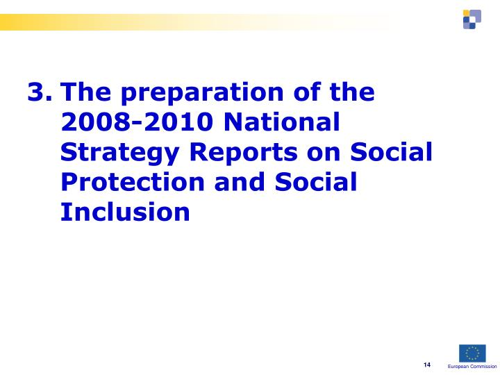 3.The preparation of the 2008-2010 National Strategy Reports on Social Protection and Social Inclusion