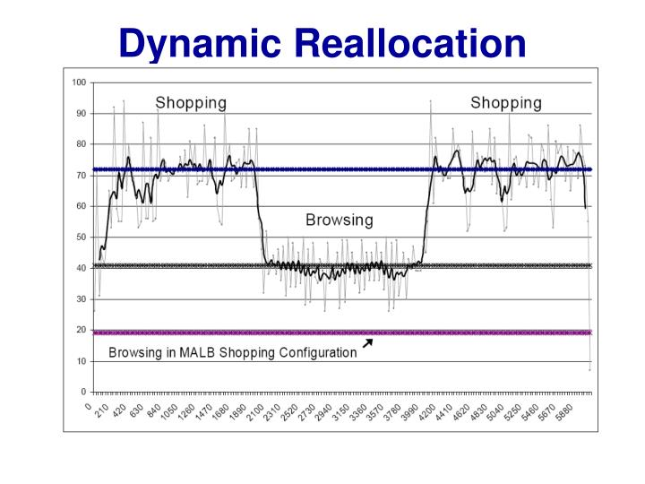 Dynamic Reallocation