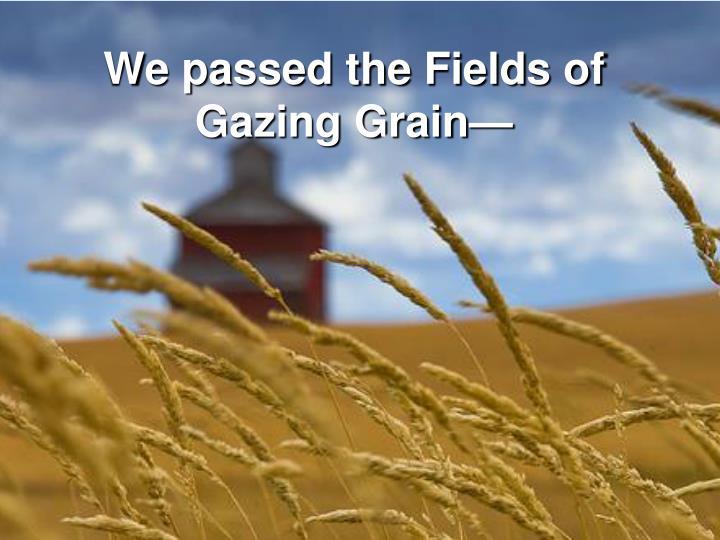 We passed the Fields of Gazing Grain—