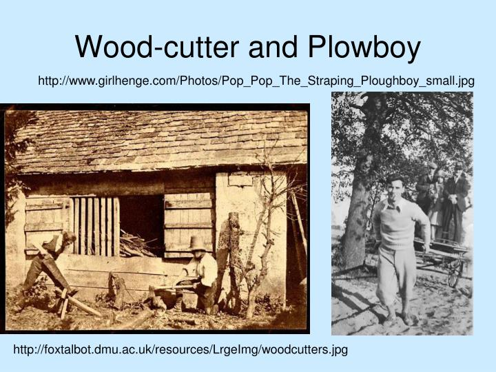 Wood-cutter and Plowboy