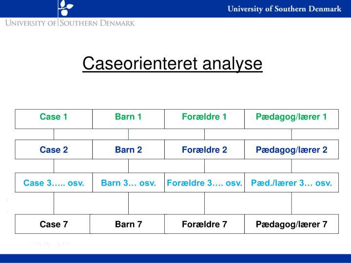 Caseorienteret analyse