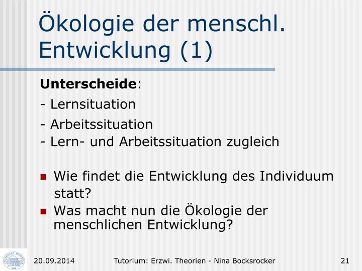 Ökologie der menschl.