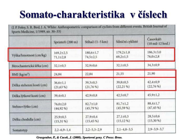 Somato-charakteristika  v číslech