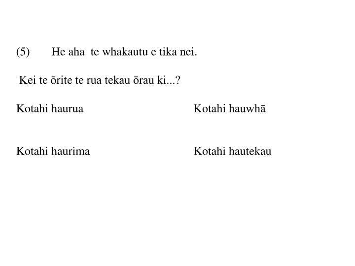 (5) He aha  te whakautu e tika nei.