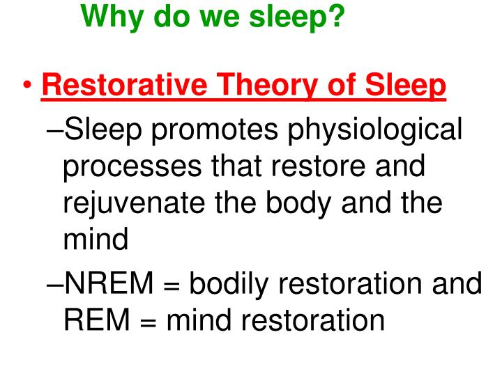 oswalds theory of the restoration of sleep function Restorative theory of sleep this is the most intuitive theory of sleep as it suggests that the function of sleep is rest and oswald's (1980) restoration.