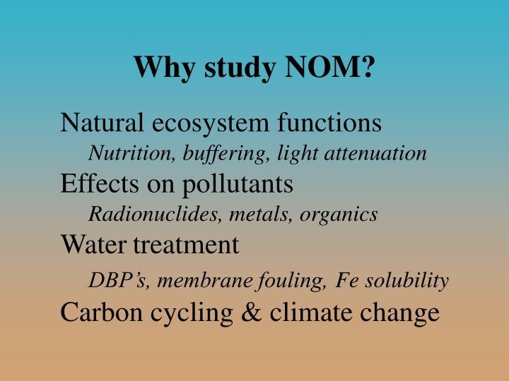 Why study NOM?