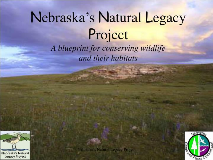 N ebraska s n atural l egacy p roject a blueprint for conserving wildlife and their habitats