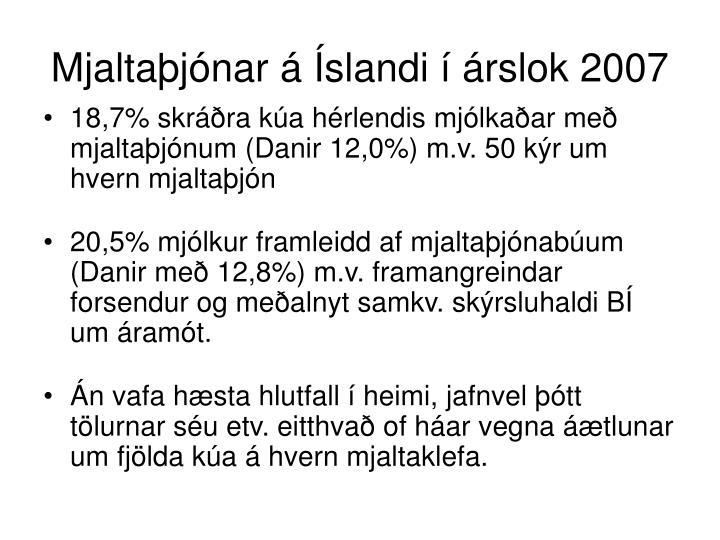Mjaltaþjónar á Íslandi í árslok 2007