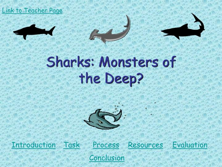 Sharks monsters of the deep