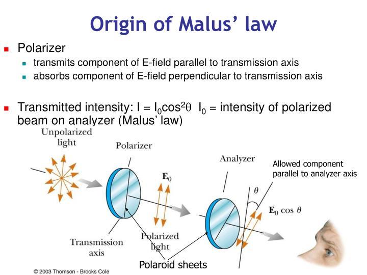 Origin of Malus' law