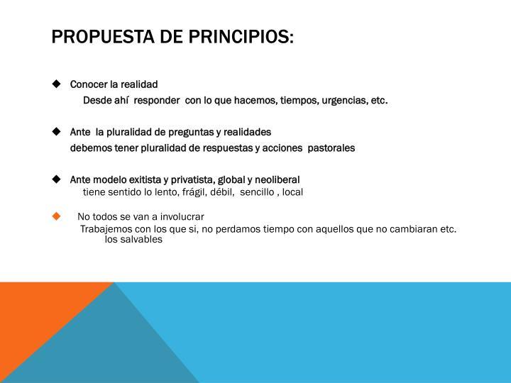 Propuesta de principios: