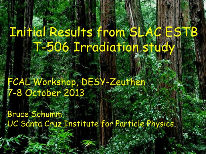 Initial Results from SLAC ESTB T-506 Irradiation study
